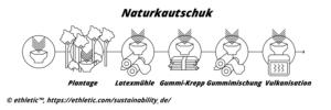 Verarbeitung von Naturkautschuk bei ethletic™