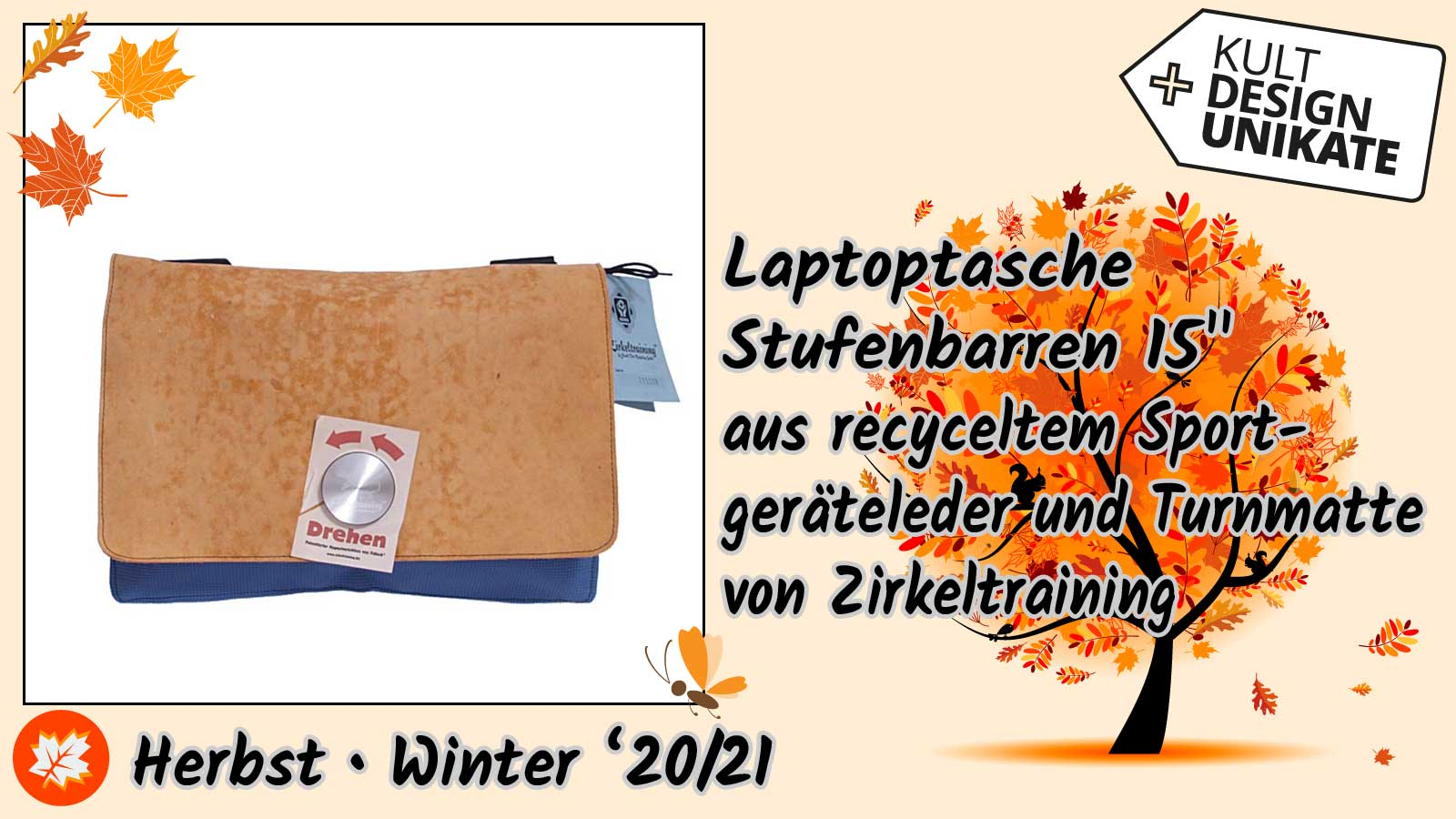 Zirkeltraining-Laptoptasche-Stufenbarren-15